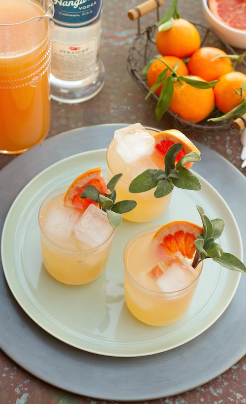 Hangar One Sparkling Sage Grapefruit Recipe