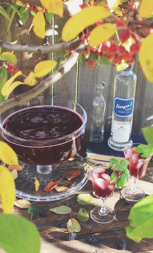 Hangar One Blackberry Cran-Apple Punch Recipe