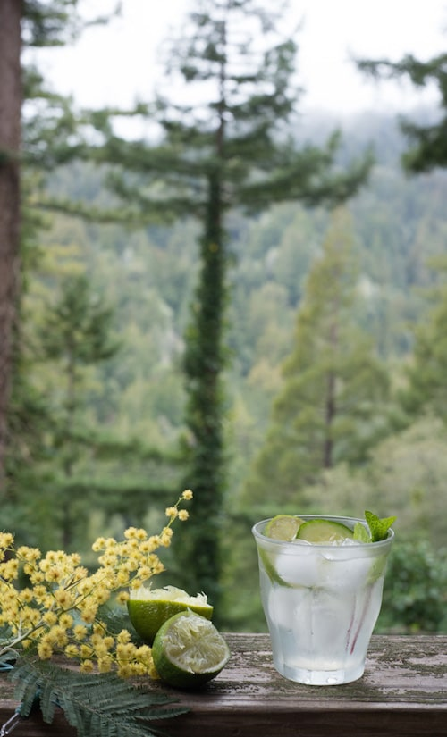 Hangar One Green Gimlet Recipe