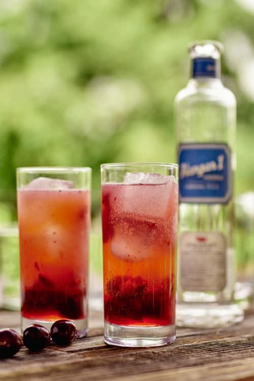 Hangar One Roasted Berry Vodka Punch Recipe
